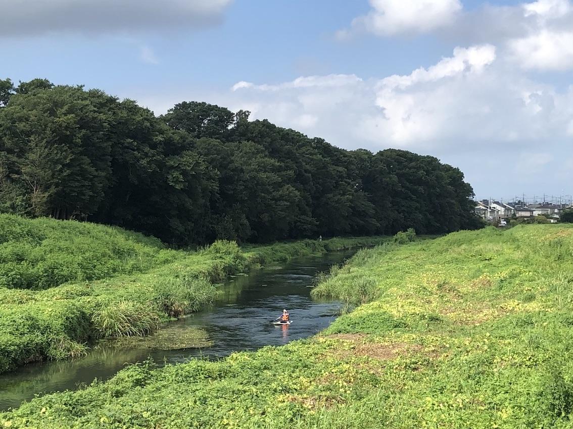 新河岸川の水辺